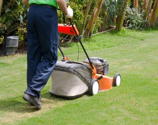 gardening-services-dordogne