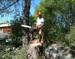 Gardener | Garden Maintenance | Dordogne | Tim Steadman